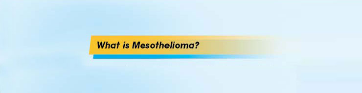 Patients_Road_Map_What_is_Mesothelioma_740